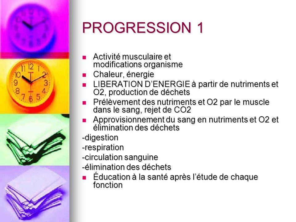PROGRESSION 1 Activité musculaire et modifications organisme Activité musculaire et modifications organisme Chaleur, énergie Chaleur, énergie LIBERATI