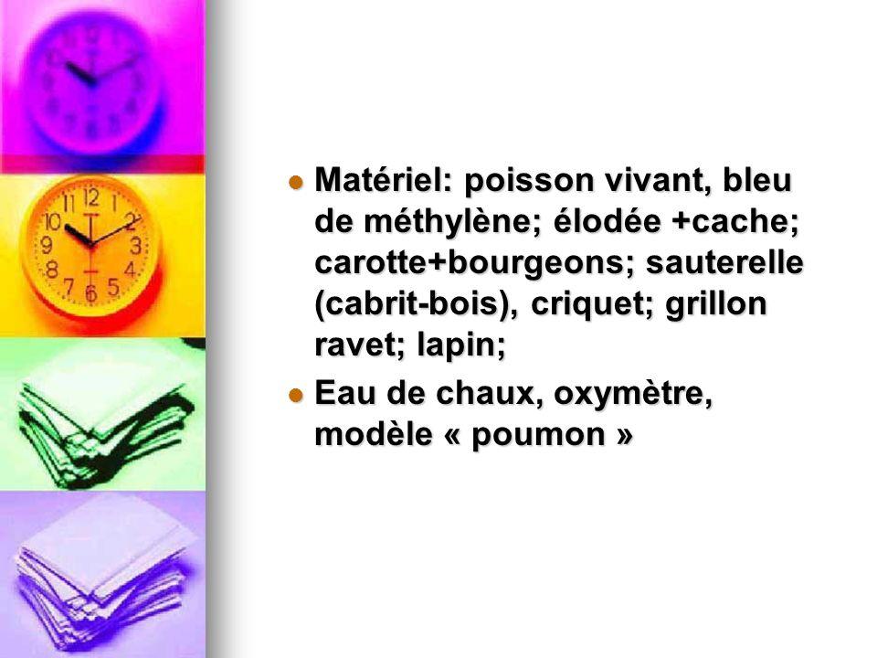 Matériel: poisson vivant, bleu de méthylène; élodée +cache; carotte+bourgeons; sauterelle (cabrit-bois), criquet; grillon ravet; lapin; Matériel: pois