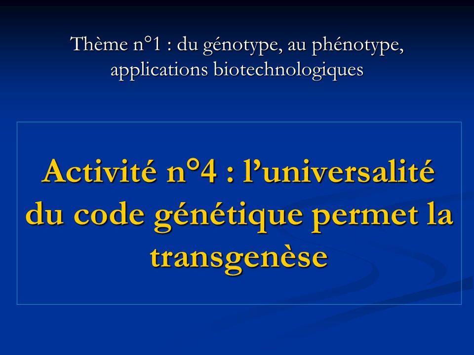 Activité n°4 : luniversalité du code génétique permet la transgenèse Thème n°1 : du génotype, au phénotype, applications biotechnologiques