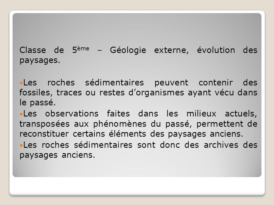 Classe de 5 ème – Géologie externe, évolution des paysages. Les roches sédimentaires peuvent contenir des fossiles, traces ou restes dorganismes ayant