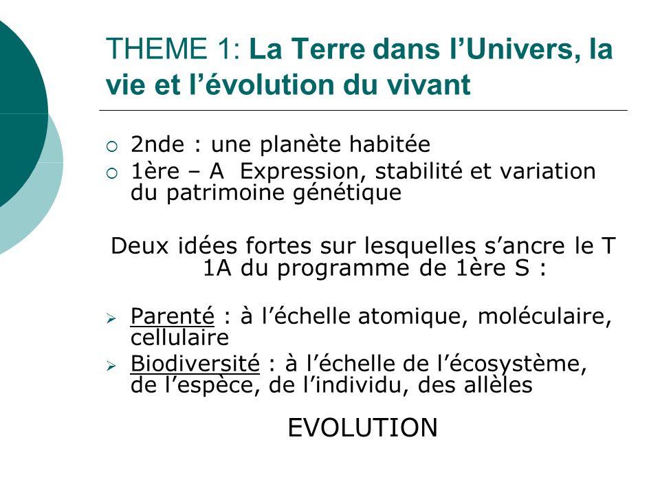 THEME 1: La Terre dans lUnivers, la vie et lévolution du vivant 2nde : une planète habitée 1ère – A Expression, stabilité et variation du patrimoine génétique Deux idées fortes sur lesquelles sancre le T 1A du programme de 1ère S : Parenté : à léchelle atomique, moléculaire, cellulaire Biodiversité : à léchelle de lécosystème, de lespèce, de lindividu, des allèles EVOLUTION