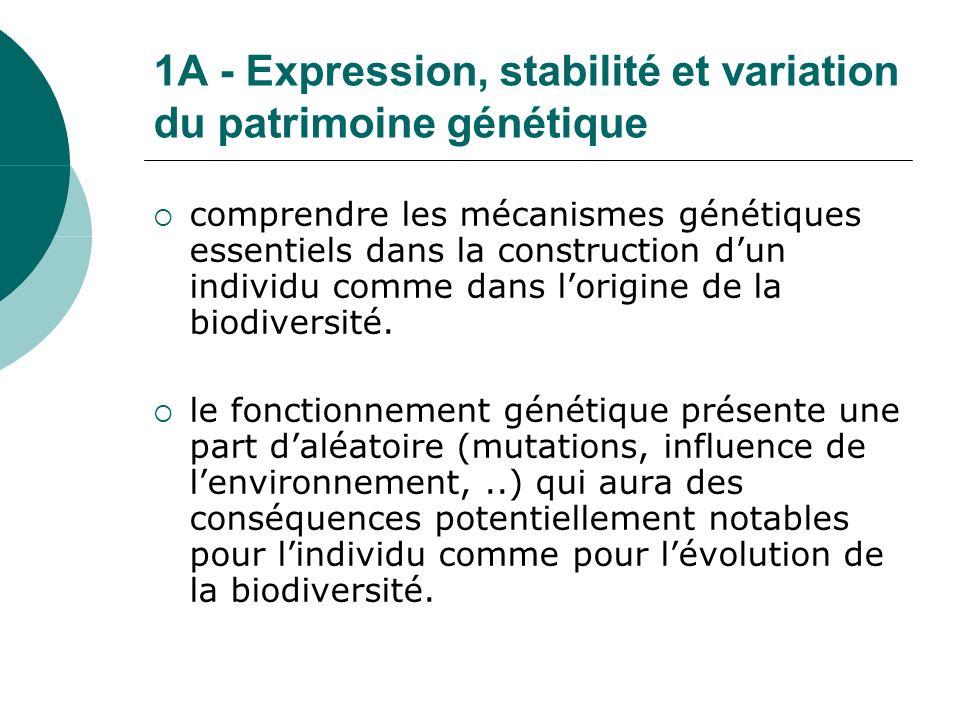 1A - Expression, stabilité et variation du patrimoine génétique comprendre les mécanismes génétiques essentiels dans la construction dun individu comme dans lorigine de la biodiversité.