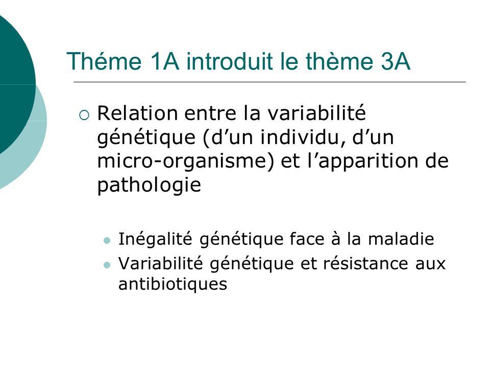 Théme 1A introduit le thème 3A Relation entre la variabilité génétique (dun individu, dun micro-organisme) et lapparition de pathologie Inégalité génétique face à la maladie Variabilité génétique et résistance aux antibiotiques