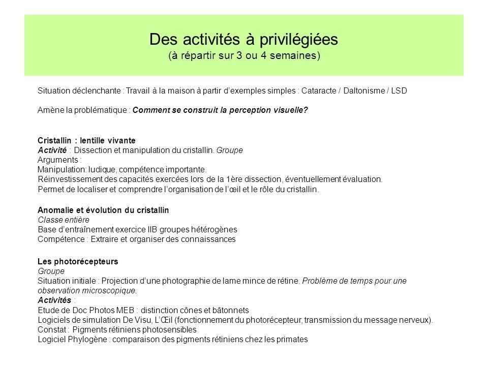 Des activités à privilégiées (à répartir sur 3 ou 4 semaines) Situation déclenchante : Travail à la maison à partir dexemples simples : Cataracte / Da