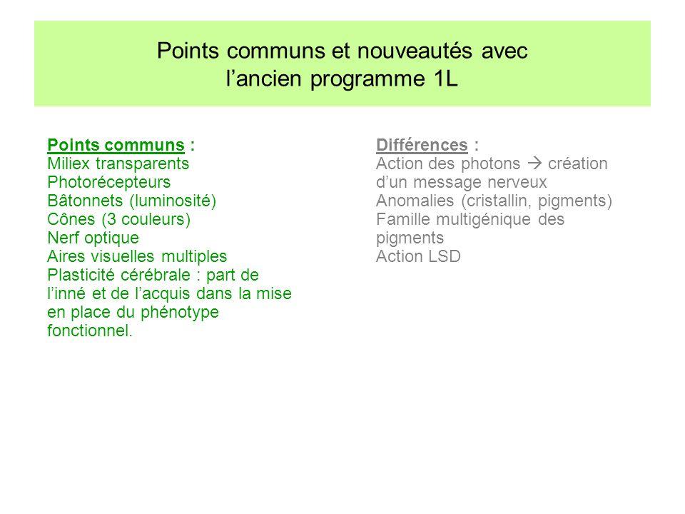 Points communs : Miliex transparents Photorécepteurs Bâtonnets (luminosité) Cônes (3 couleurs) Nerf optique Aires visuelles multiples Plasticité céréb