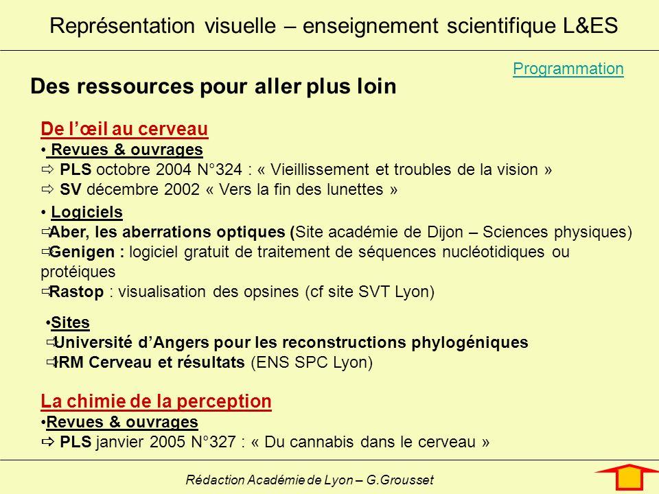 Représentation visuelle – enseignement scientifique L&ES Rédaction Académie de Lyon – G.Grousset De lœil au cerveau Revues & ouvrages PLS octobre 2004