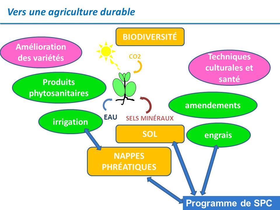 5 Vers une agriculture durable EAU CO2 SELS MINÉRAUX irrigation engrais amendements Produits phytosanitaires Techniques culturales et santé Améliorati
