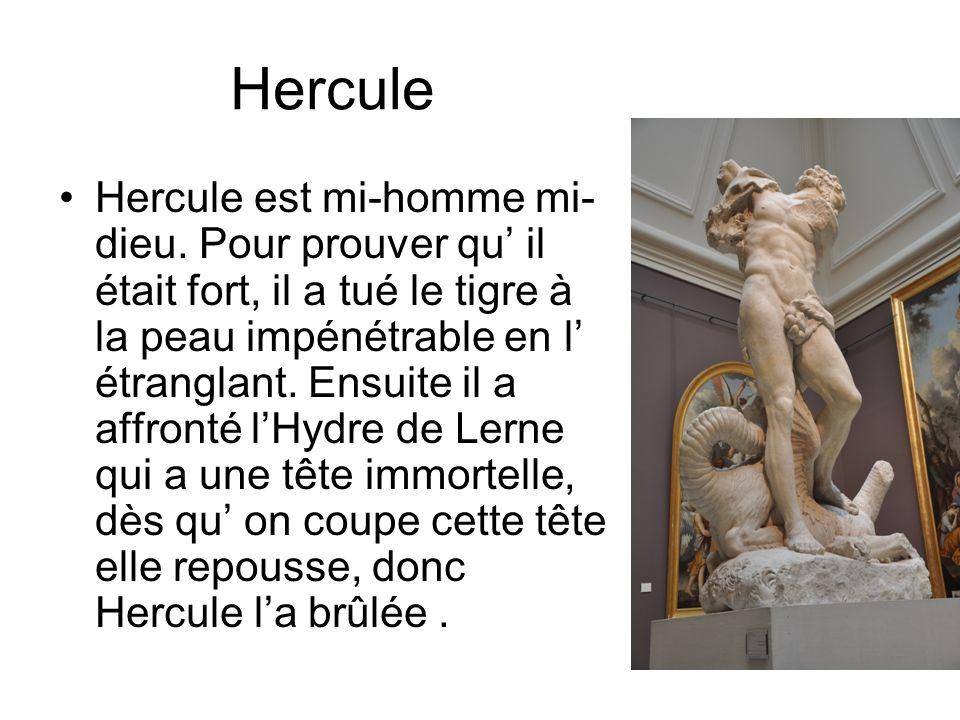 Hercule Hercule est mi-homme mi- dieu.