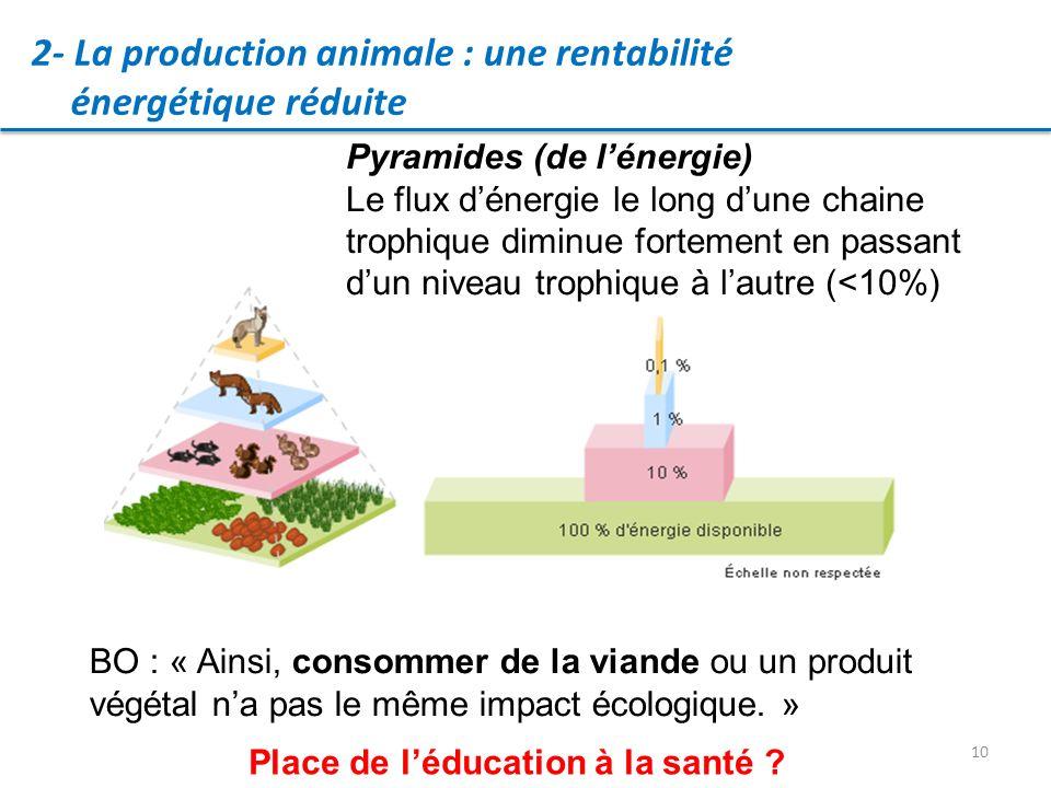 10 2- La production animale : une rentabilité énergétique réduite Pyramides (de lénergie) Le flux dénergie le long dune chaine trophique diminue fortement en passant dun niveau trophique à lautre (<10%) BO : « Ainsi, consommer de la viande ou un produit végétal na pas le même impact écologique.