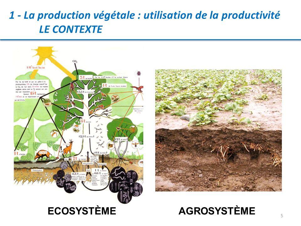 5 1 - La production végétale : utilisation de la productivité LE CONTEXTE AGROSYSTÈMEECOSYSTÈME