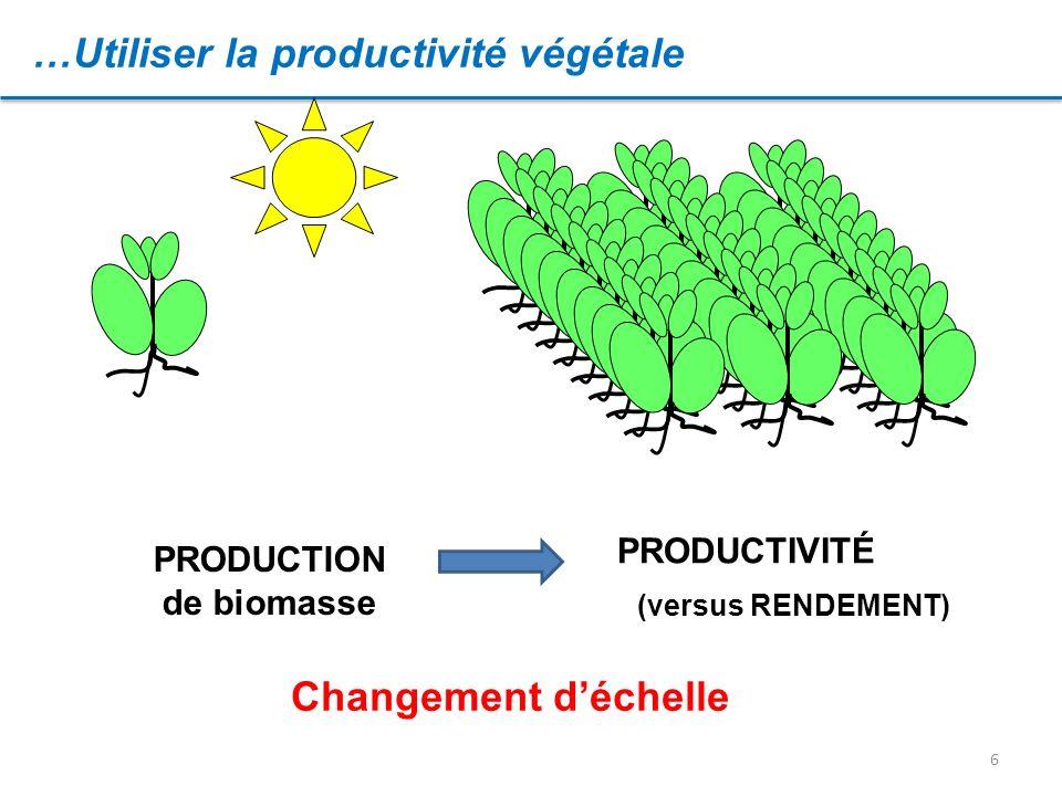 6 …Utiliser la productivité végétale PRODUCTION de biomasse PRODUCTIVITÉ Changement déchelle (versus RENDEMENT)
