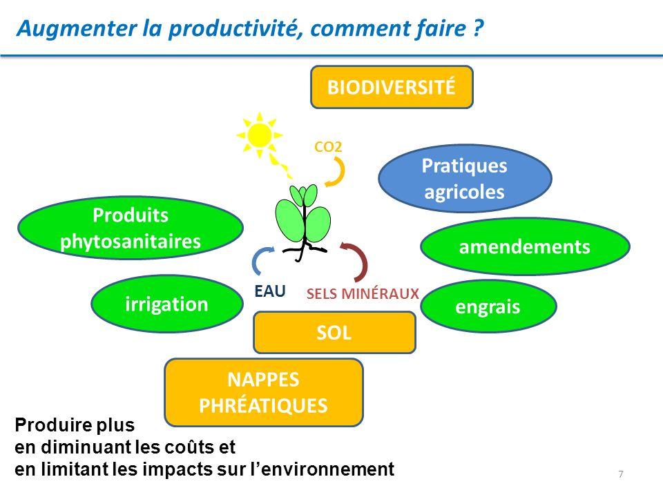 7 Augmenter la productivité, comment faire ? EAU CO2 SELS MINÉRAUX irrigation engrais amendements Produits phytosanitaires Pratiques agricoles Produir