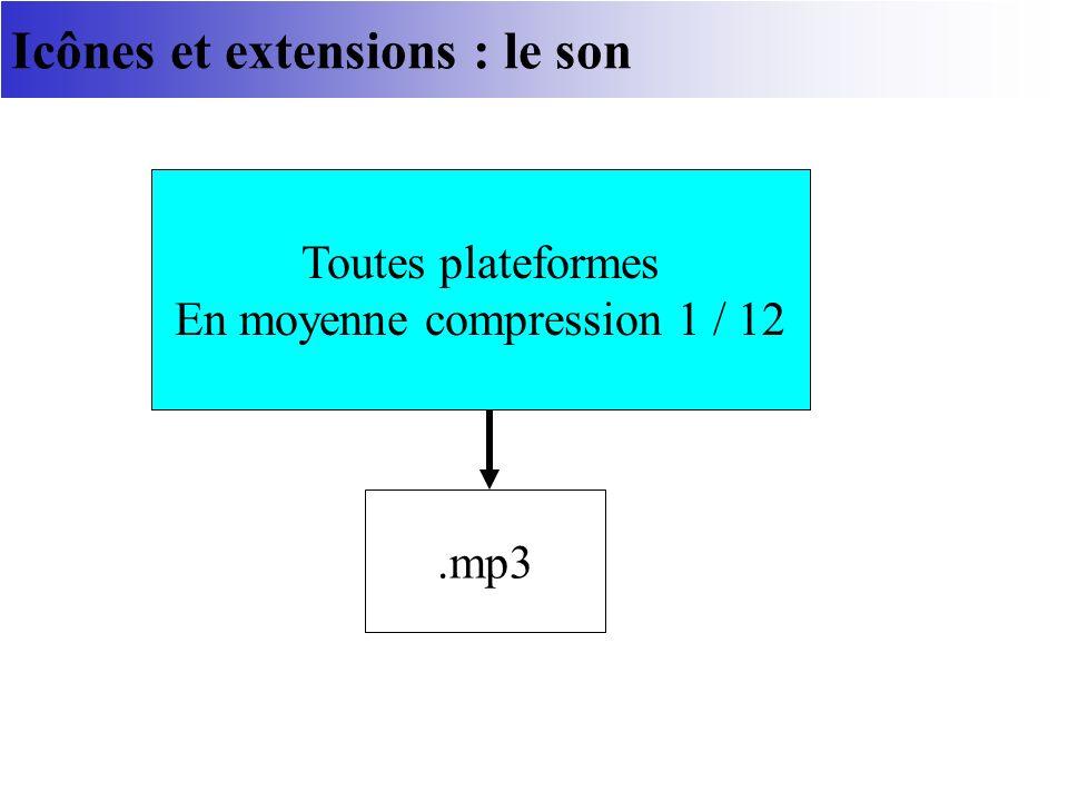Icônes et extensions : le son.mp3 Toutes plateformes En moyenne compression 1 / 12