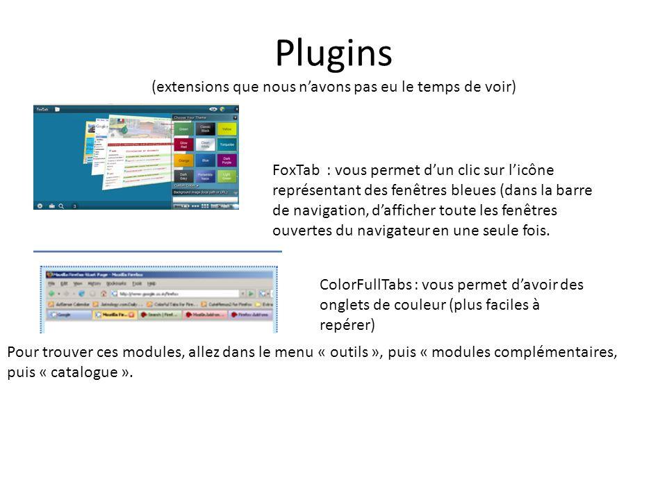 Plugins (extensions que nous navons pas eu le temps de voir) FoxTab : vous permet dun clic sur licône représentant des fenêtres bleues (dans la barre de navigation, dafficher toute les fenêtres ouvertes du navigateur en une seule fois.