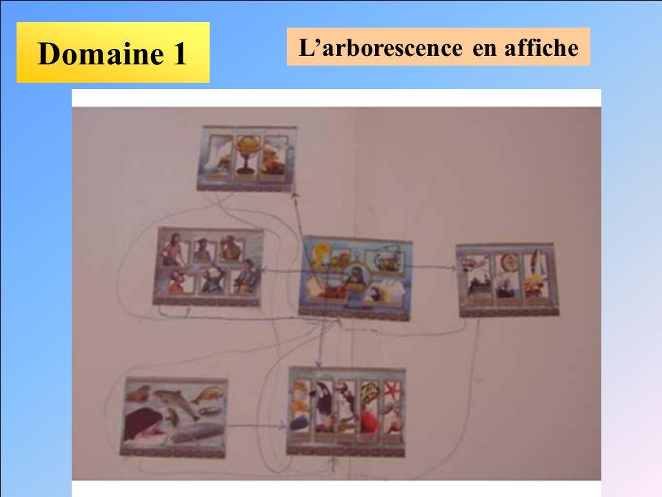Domaine 1 Larborescence en affiche
