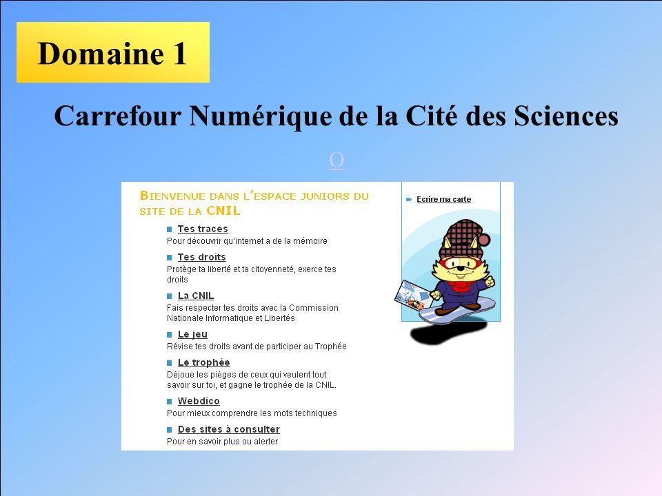 Domaine 1 Carrefour Numérique de la Cité des Sciences O
