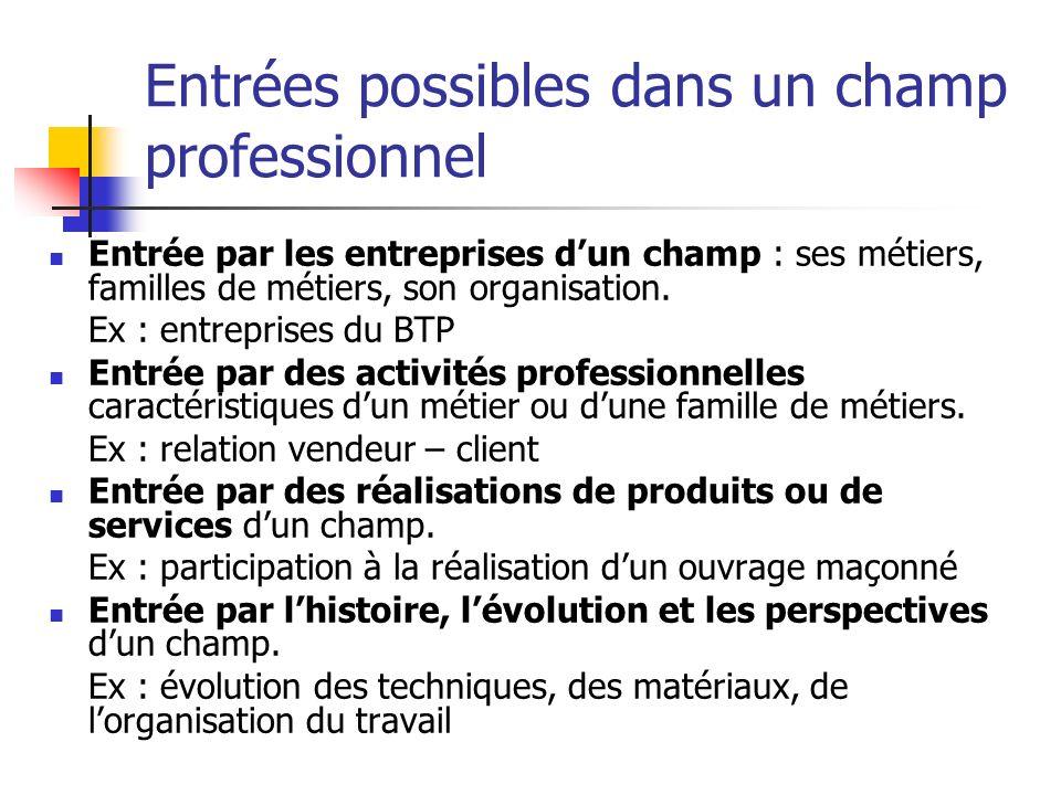 Entrées possibles dans un champ professionnel Entrée par les entreprises dun champ : ses métiers, familles de métiers, son organisation.