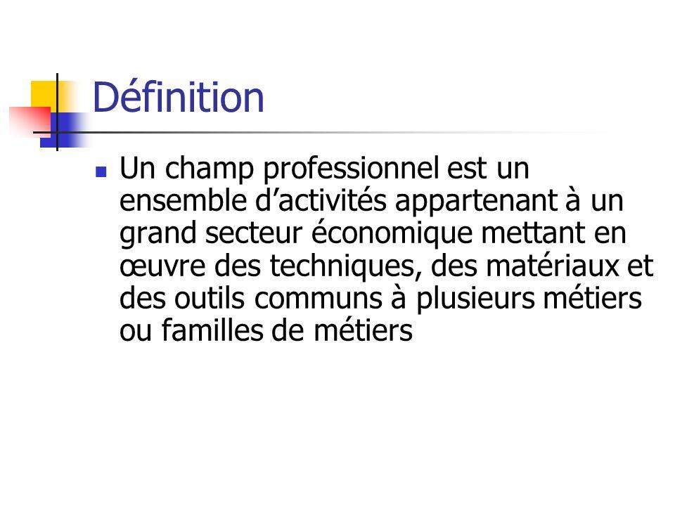 Définition Un champ professionnel est un ensemble dactivités appartenant à un grand secteur économique mettant en œuvre des techniques, des matériaux et des outils communs à plusieurs métiers ou familles de métiers