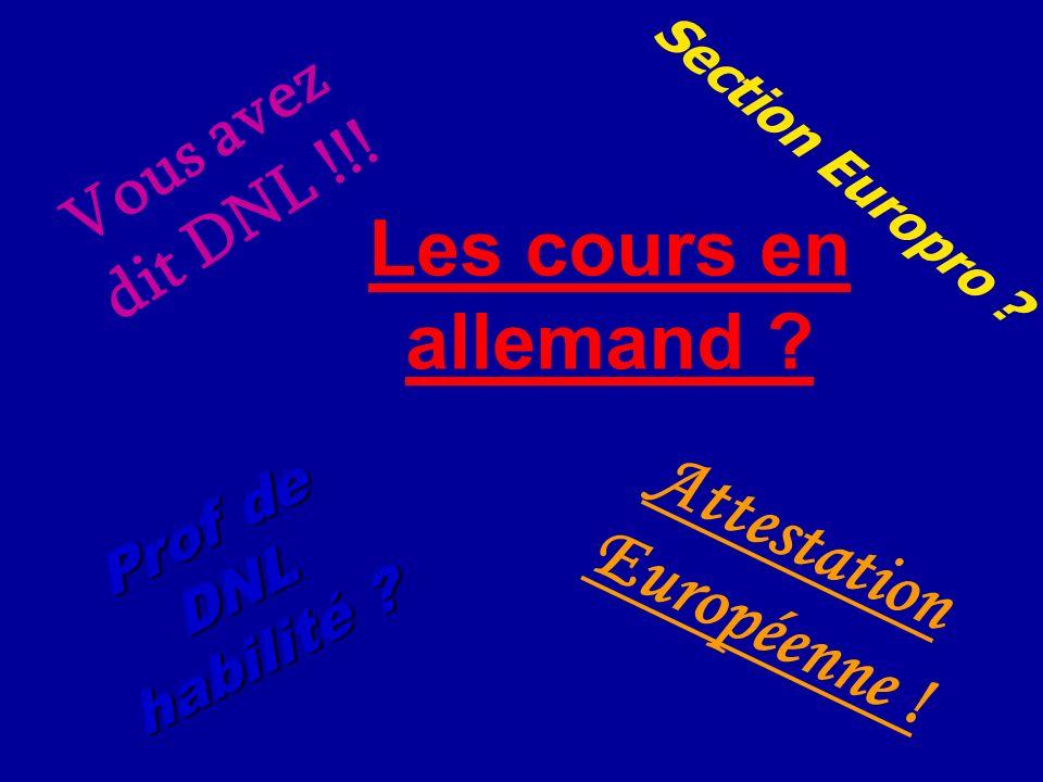 V o u s a v e z d i t D N L ! ! ! Section Europro ? Attestation Européenne ! Prof de DNL habilité ? Les cours en allemand ?