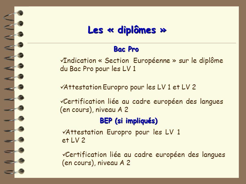 Dictionnaire professionnel pour les cuisiniers en 6 langues en partenariat avec 4 pays européens