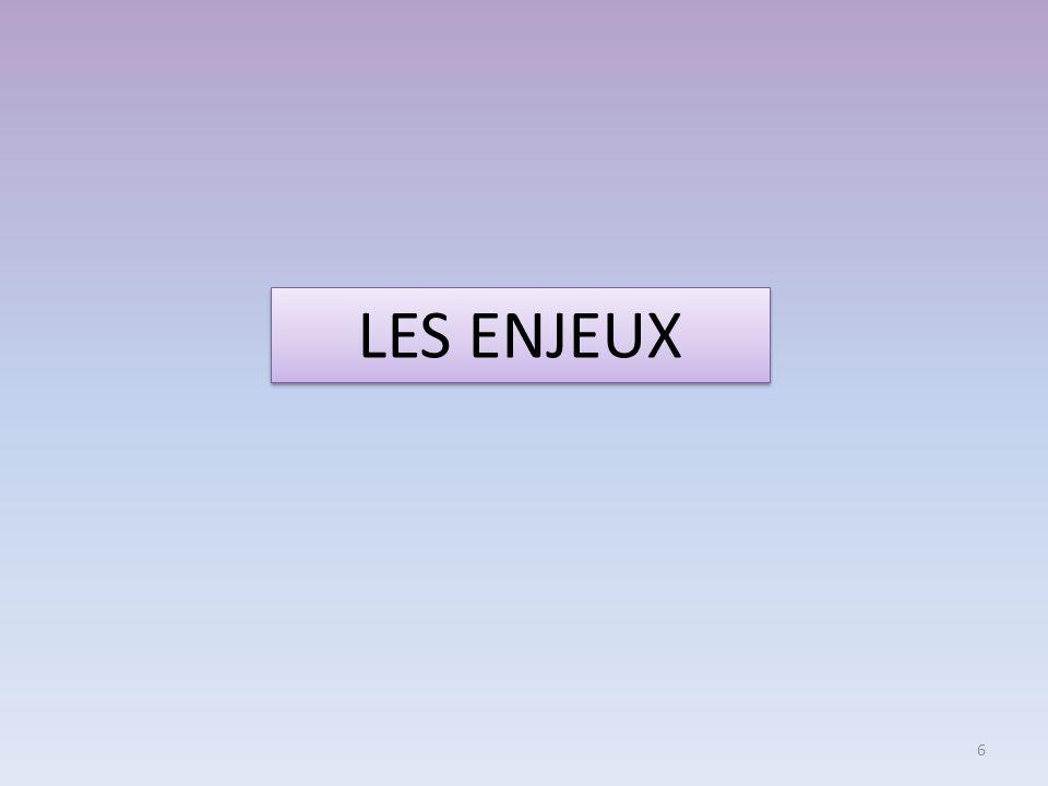 LES ENJEUX 6