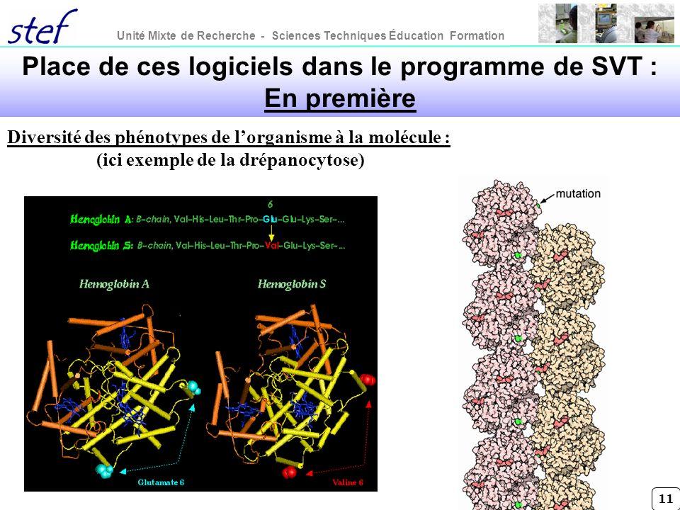 Unité Mixte de Recherche - Sciences Techniques Éducation Formation 11 Diversité des phénotypes de lorganisme à la molécule : (ici exemple de la drépan
