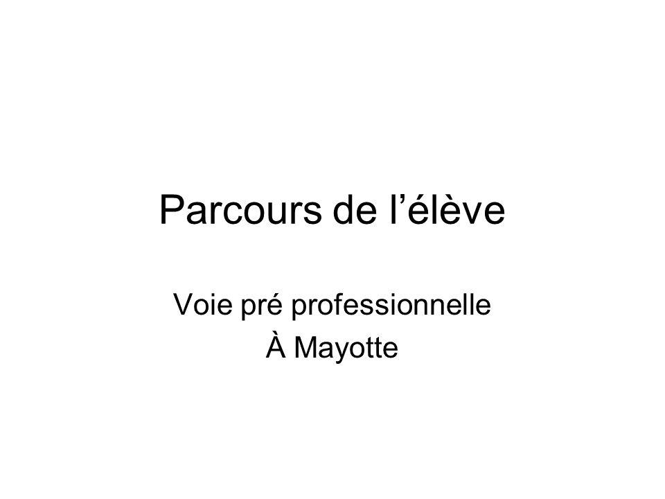 Parcours de lélève Voie pré professionnelle À Mayotte
