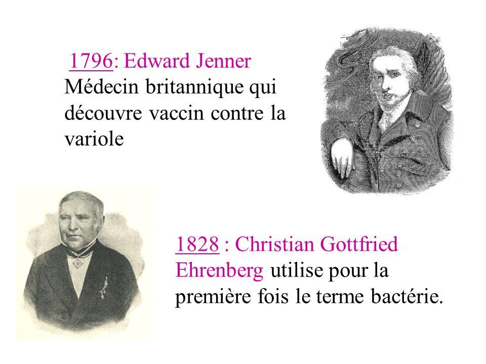 1828 : Christian Gottfried Ehrenberg utilise pour la première fois le terme bactérie.