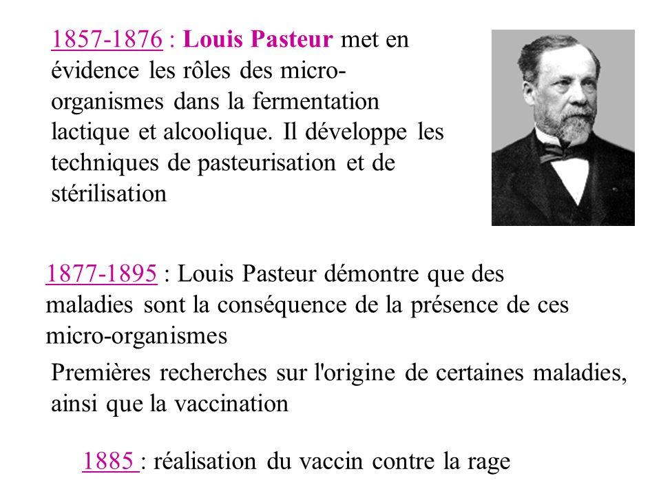 1877-1895 : Louis Pasteur démontre que des maladies sont la conséquence de la présence de ces micro-organismes Premières recherches sur l origine de certaines maladies, ainsi que la vaccination 1857-1876 : Louis Pasteur met en évidence les rôles des micro- organismes dans la fermentation lactique et alcoolique.