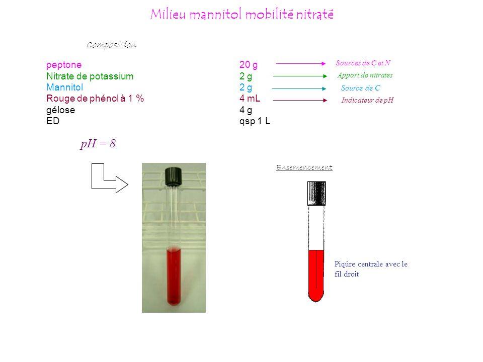 Milieu mannitol mobilité nitraté peptone20 g Nitrate de potassium2 g Mannitol2 g Rouge de phénol à 1 %4 mL gélose4 g EDqsp 1 L Composition Source de C