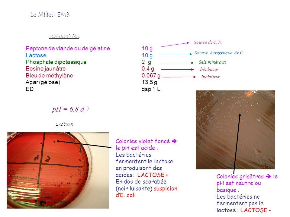 Peptone de viande ou de gélatine10 g Lactose10 g Phosphate dipotassique2 g Eosine jaunâtre0,4 g Bleu de méthylène0,067 g Agar (gélose)13,5 g EDqsp 1 L