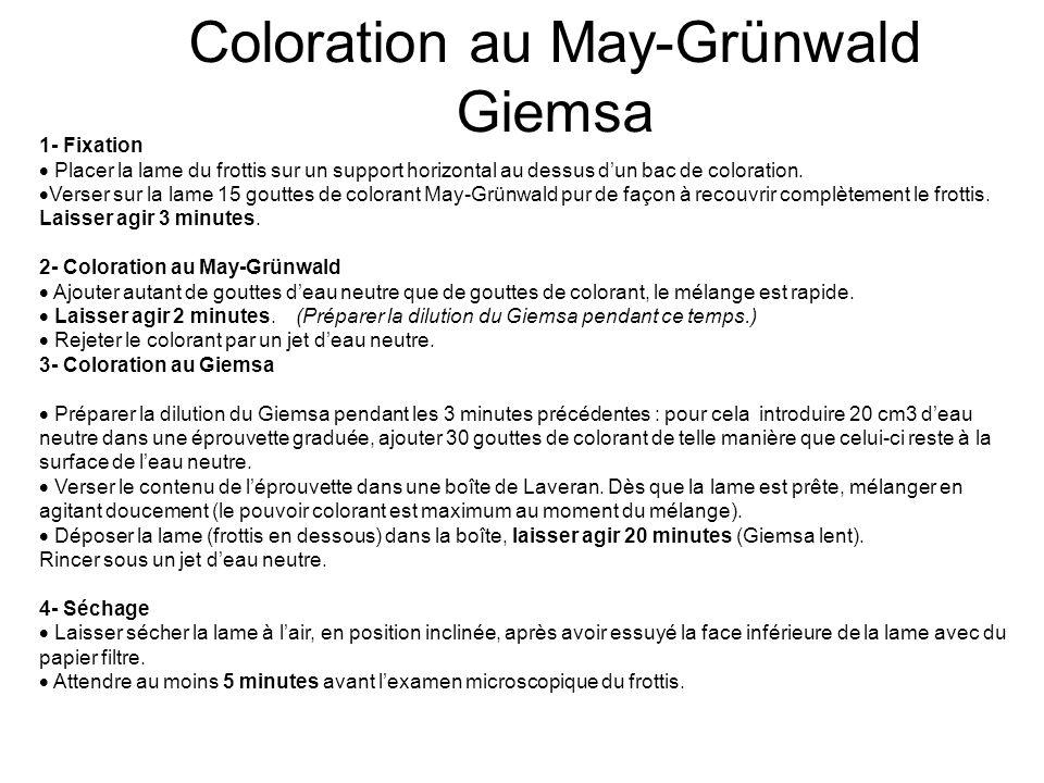 Coloration au May-Grünwald Giemsa 1- Fixation Placer la lame du frottis sur un support horizontal au dessus dun bac de coloration. Verser sur la lame