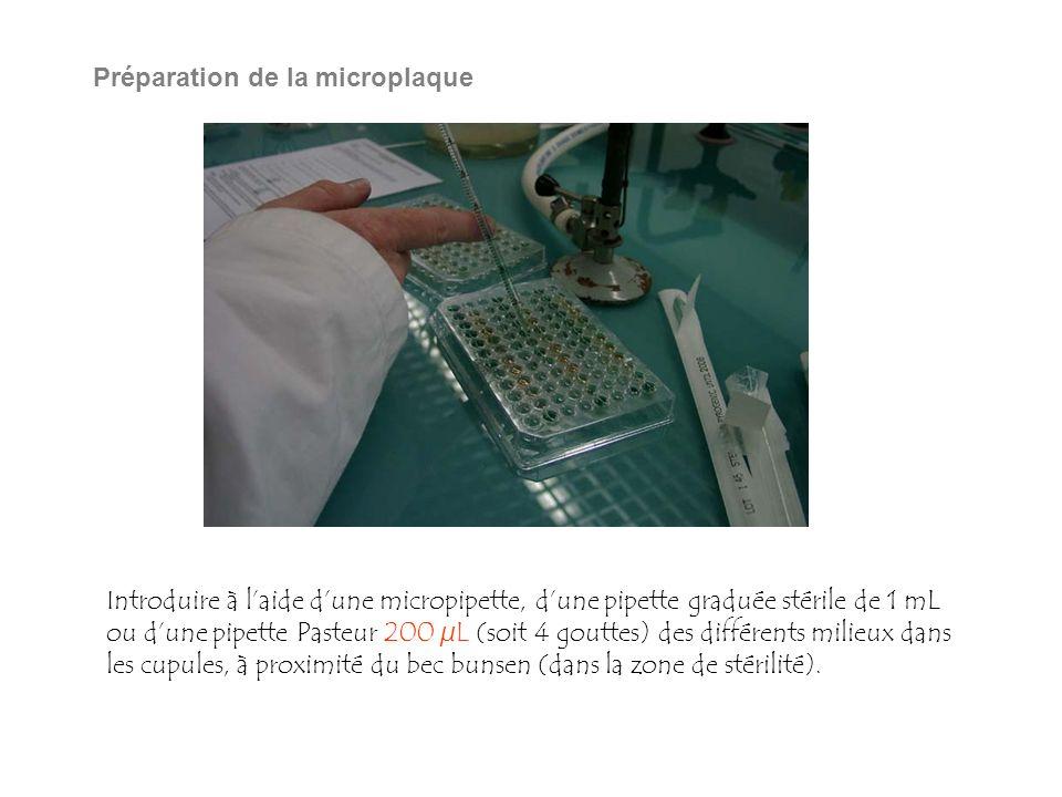Préparation de la microplaque Introduire à laide dune micropipette, dune pipette graduée stérile de 1 mL ou dune pipette Pasteur 200 µL (soit 4 gouttes) des différents milieux dans les cupules, à proximité du bec bunsen (dans la zone de stérilité).