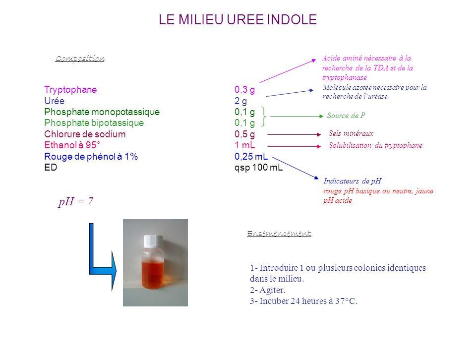 LE MILIEU UREE INDOLE Tryptophane0,3 g Urée2 g Phosphate monopotassique0,1 g Phosphate bipotassique0,1 g Chlorure de sodium0,5 g Ethanol à 95°1 mL Rouge de phénol à 1%0,25 mL EDqsp 100 mL Composition Acide aminé nécessaire à la recherche de la TDA et de la tryptophanase Source de P Indicateurs de pH rouge pH basique ou neutre, jaune pH acide pH = 7 Molécule azotée nécessaire pour la recherche de luréase Ensemencement 1- Introduire 1 ou plusieurs colonies identiques dans le milieu.