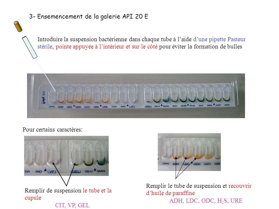 3- Ensemencement de la galerie API 20 E Introduire la suspension bactérienne dans chaque tube à laide dune pipette Pasteur stérile, pointe appuyée à l