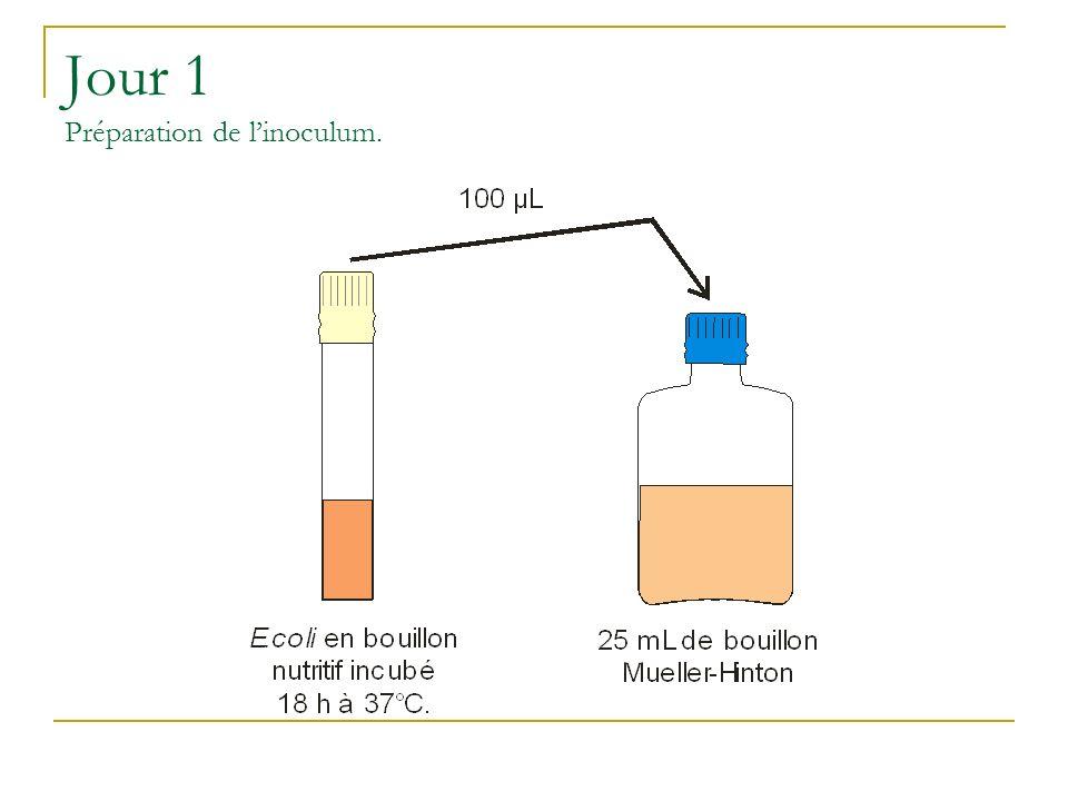 Jour 1 Préparation de linoculum.