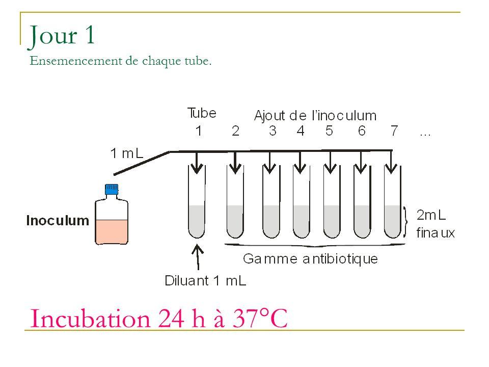Jour 1 Ensemencement de chaque tube. Incubation 24 h à 37°C