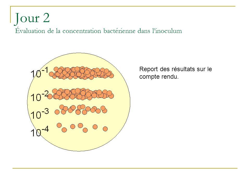 Jour 2 Évaluation de la concentration bactérienne dans linoculum Report des résultats sur le compte rendu.