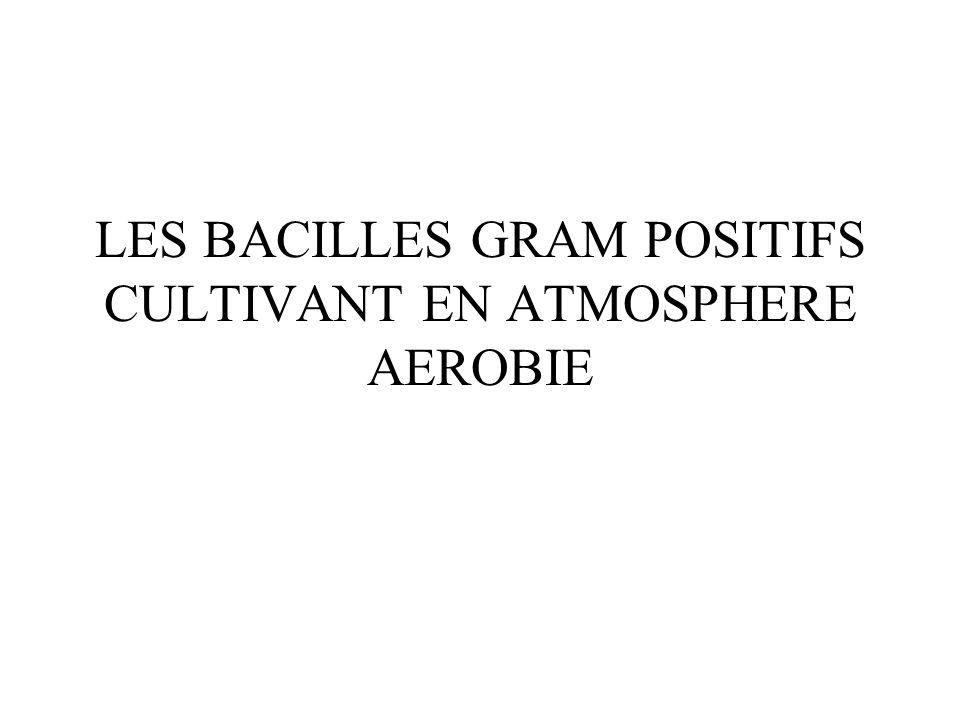 LES BACILLES GRAM POSITIFS CULTIVANT EN ATMOSPHERE AEROBIE