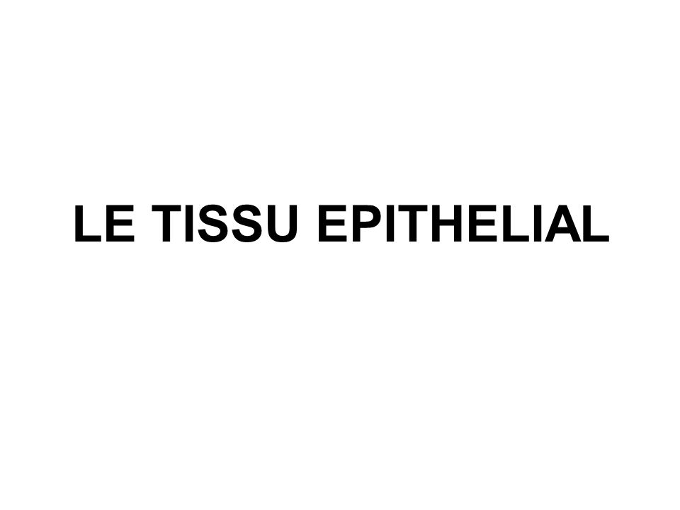LE TISSU EPITHELIAL