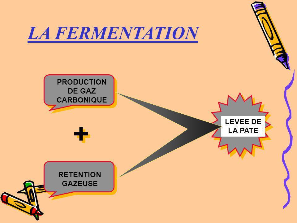 LA FERMENTATION PRODUCTION DE GAZ CARBONIQUE LEVEE DE LA PATE RETENTION GAZEUSE + +