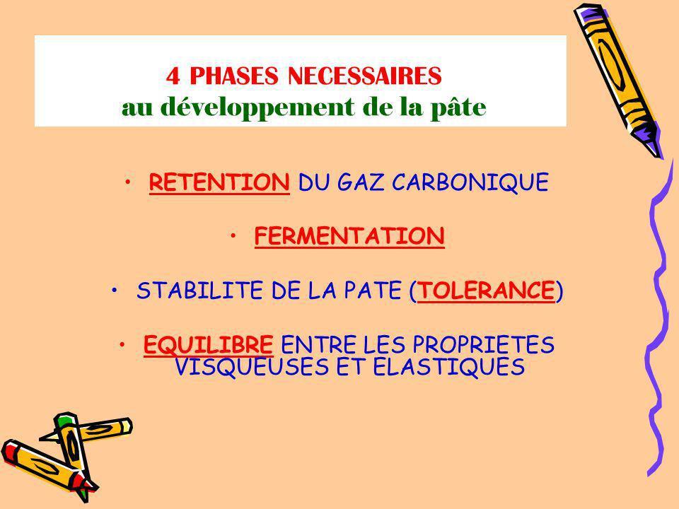 4 PHASES NECESSAIRES au développement de la pâte RETENTION DU GAZ CARBONIQUE FERMENTATION STABILITE DE LA PATE (TOLERANCE) EQUILIBRE ENTRE LES PROPRIETES VISQUEUSES ET ELASTIQUES