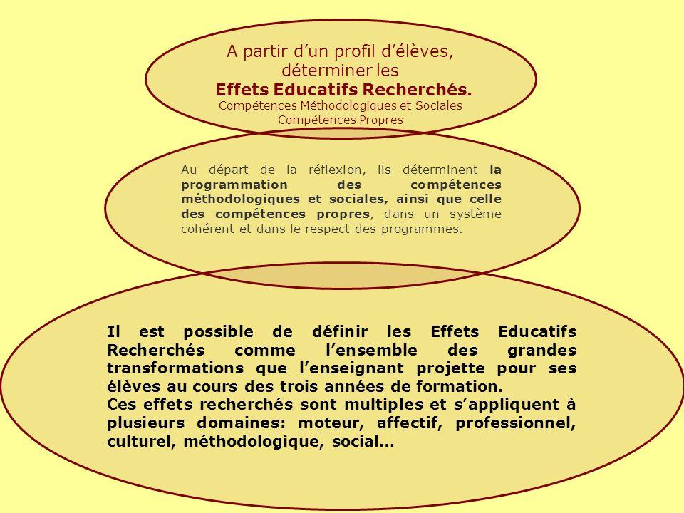 Au départ de la réflexion, ils déterminent la programmation des compétences méthodologiques et sociales, ainsi que celle des compétences propres, dans un système cohérent et dans le respect des programmes.