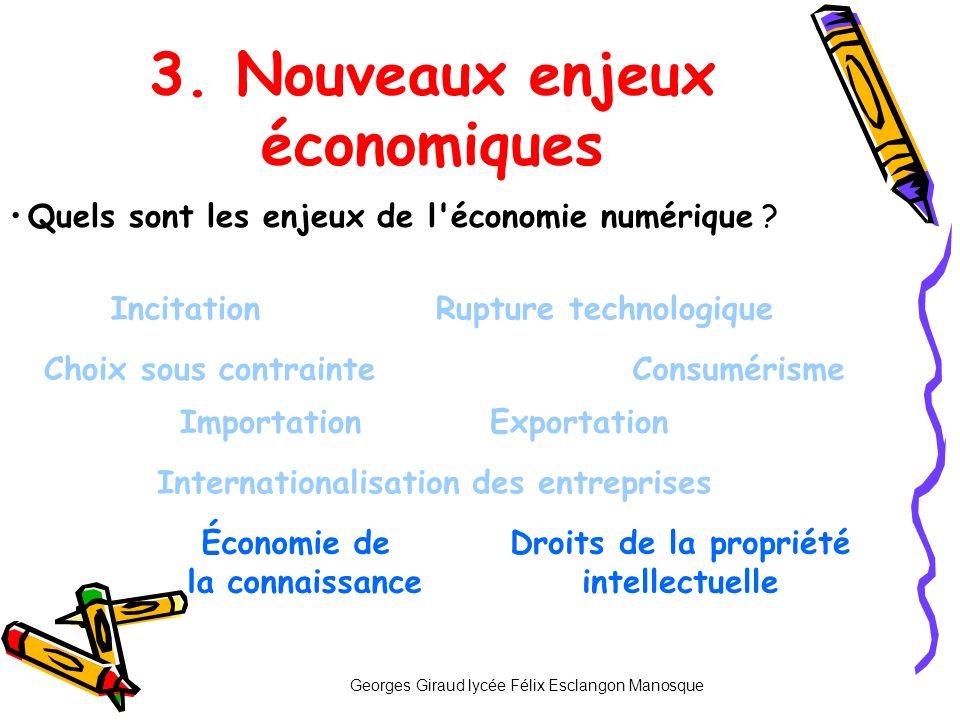 3. Nouveaux enjeux économiques Incitation ImportationExportation Internationalisation des entreprises Quels sont les enjeux de l'économie numérique ?