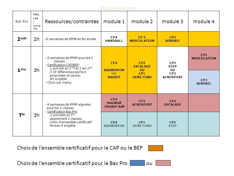 PROGRAMMATION Bac Pro Heu res / sema ine Ressources/contraintesmodule 1module 2module 3module 4 2 nde 2h -6 semaines de PFMP en fin année CP4 HANDBALL CP 5 MUSCULATION CP3 AEROBIC 1 ère 3h - 8 semaines de PFMP pour les 2 classes.