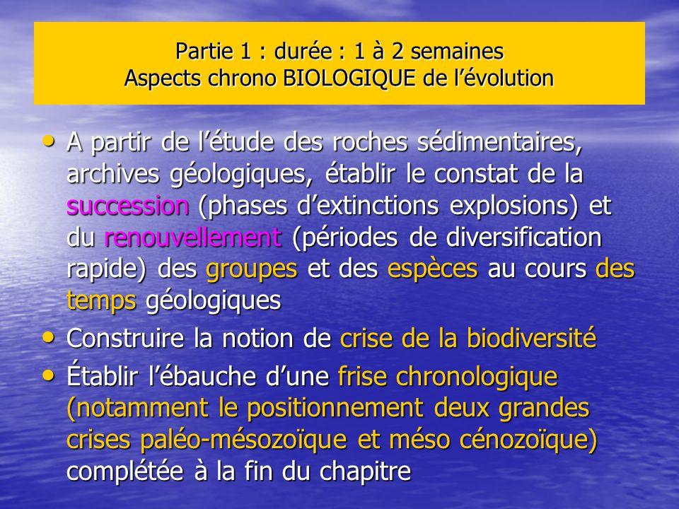 Partie 1 : durée : 1 à 2 semaines Aspects chrono BIOLOGIQUE de lévolution A partir de létude des roches sédimentaires, archives géologiques, établir l