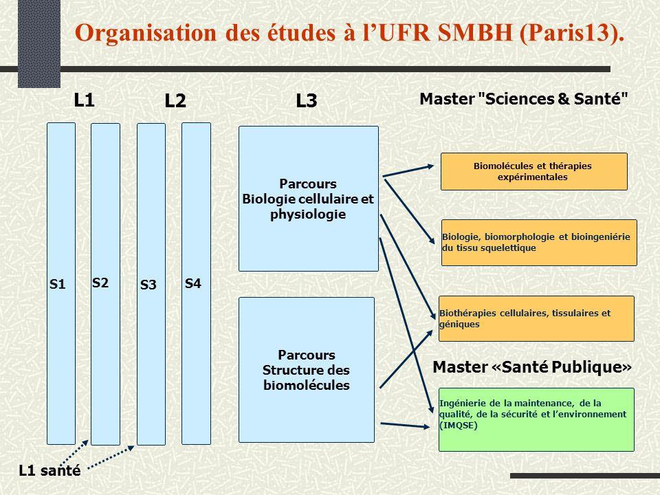 Organisation des études à lUFR SMBH (Paris13). L1 L2 L3 Master