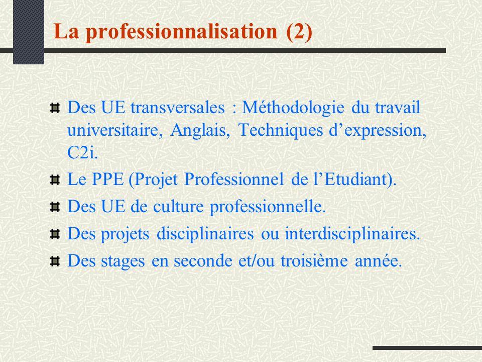 La professionnalisation (2) Des UE transversales : Méthodologie du travail universitaire, Anglais, Techniques dexpression, C2i. Le PPE (Projet Profess