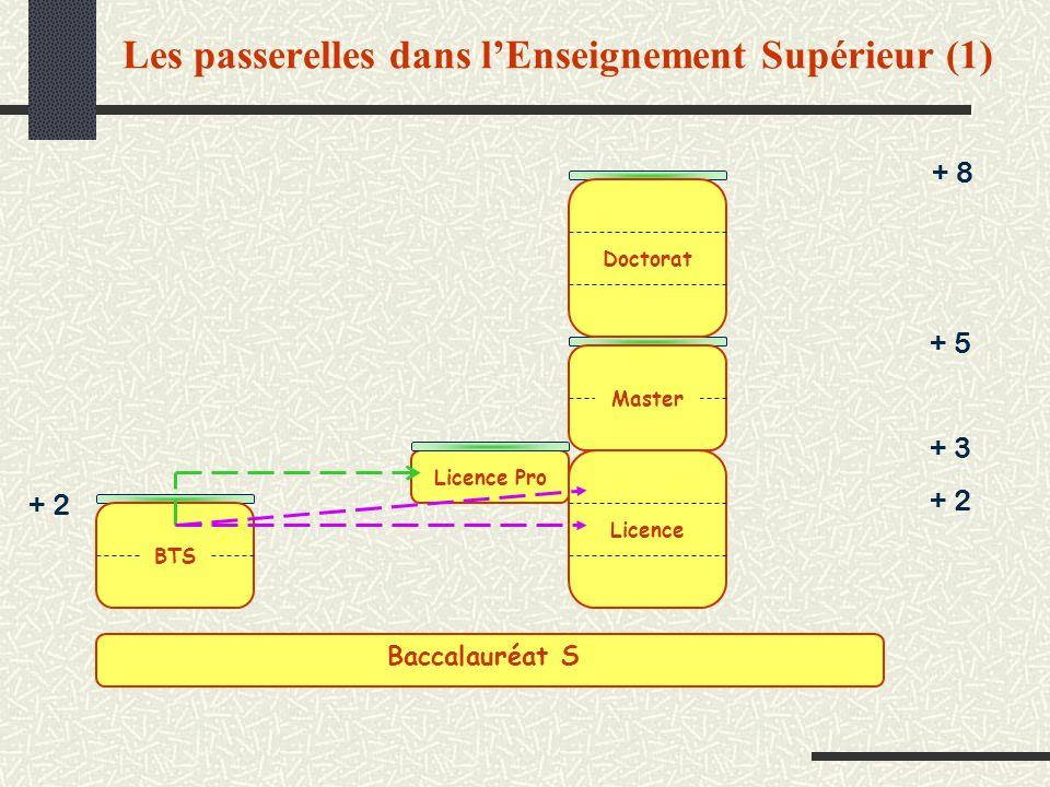 Les passerelles dans lEnseignement Supérieur (1) + 8 + 3 + 5 + 2 BTS Master Licence Doctorat Licence Pro Baccalauréat S