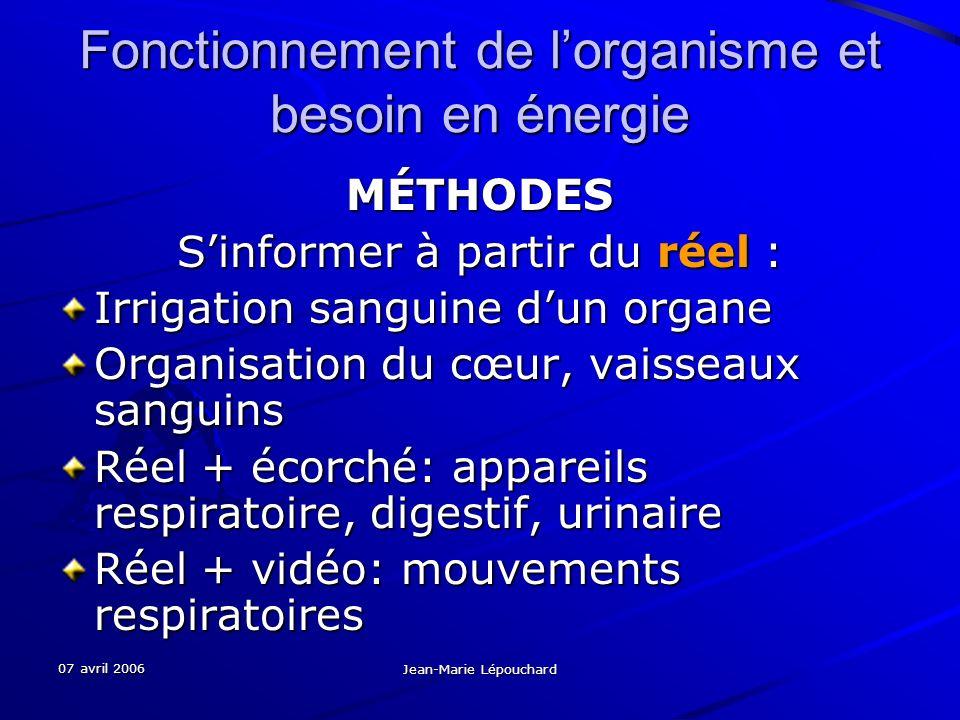07 avril 2006 Jean-Marie Lépouchard Fonctionnement de lorganisme et besoin en énergie MÉTHODES Sinformer à partir du réel : Irrigation sanguine dun or
